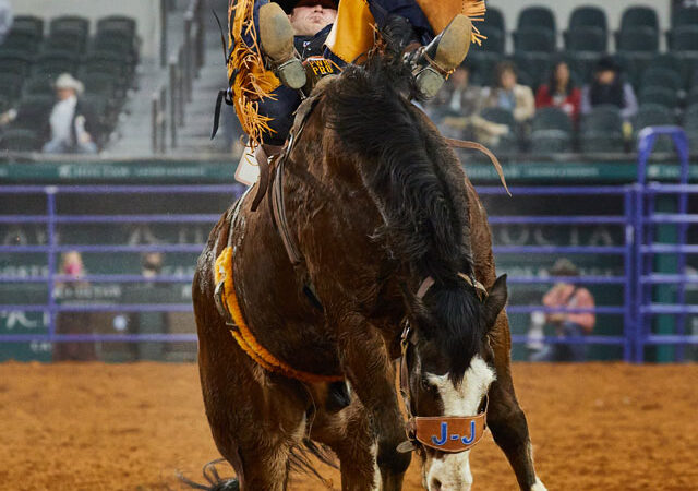 Top 10 Cowboys and Cowgirls Announced for The American Rodeo in Arlington, Texas