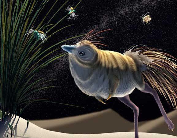 Shuvuuia: Extraordinary Dinosaurs That Hunted in the Dark