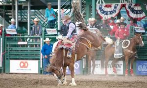 Reno Rodeo 2021 Live Stream : Cowboys ready for Reno Rodeo game Online from anywhere